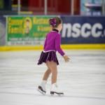 Skate Fest 2015
